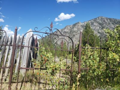 Graveyards: an outdoor museum thats free!